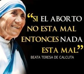 Madre Teresa-sí a la vida