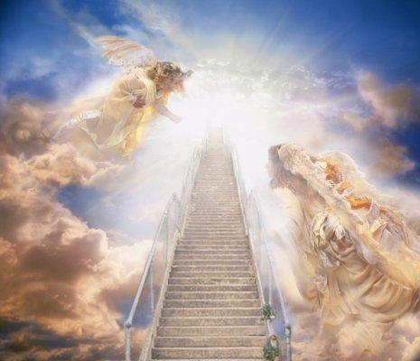 El Cielo | Contracorriente