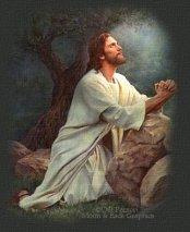 Jesús hágase en mí Tu voluntad